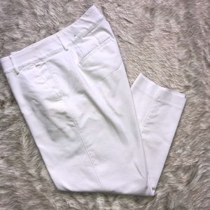 Lane Bryant pants size 14